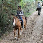Rutas a caballo Los Cauces