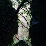 Cueva Tinganon, Ribadesella