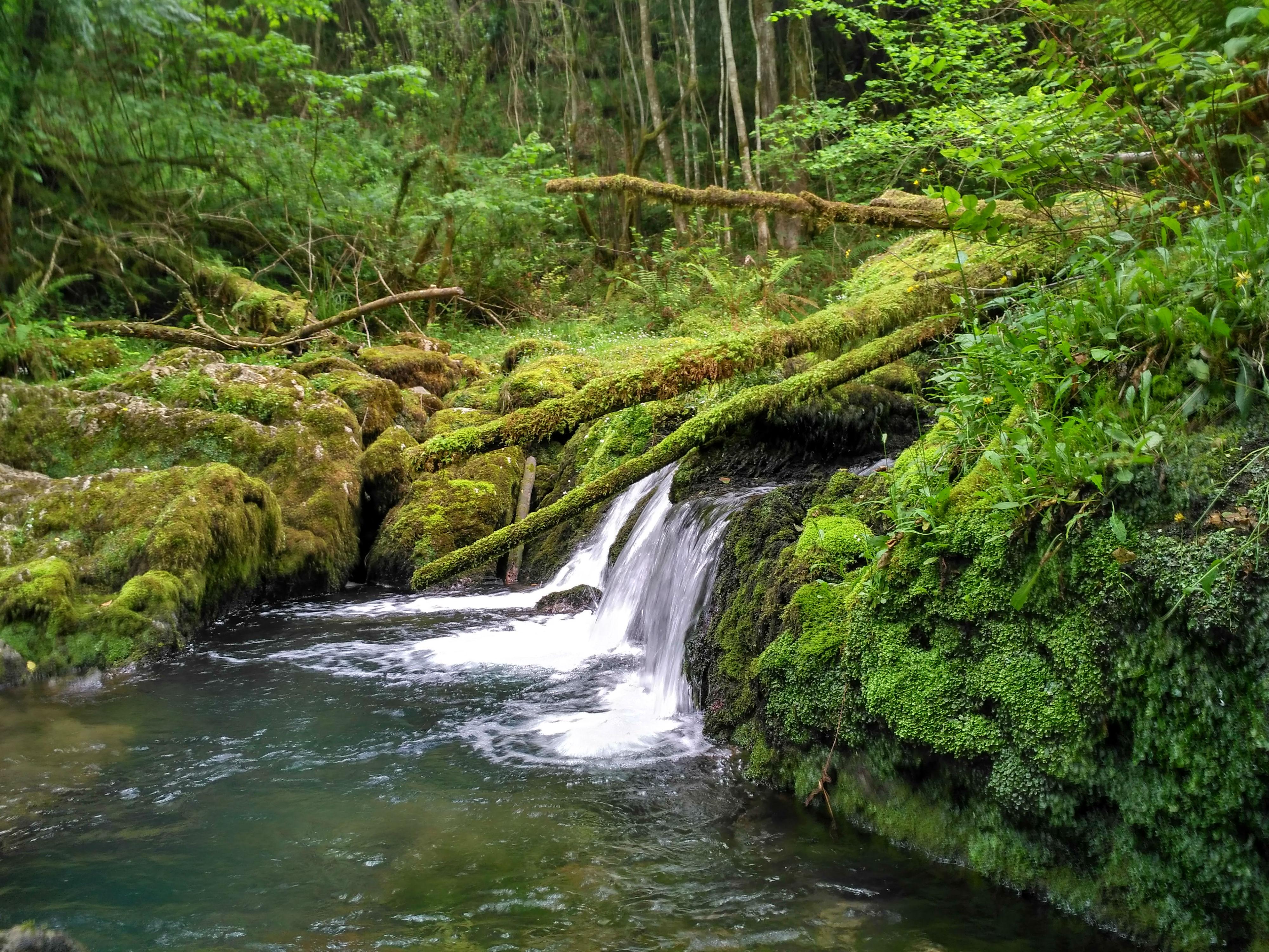 Ruta de la Cascada de Obaya